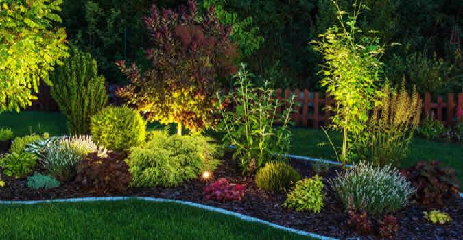 backyard designs - Landscape Lighting - Mesa, AZ Chop Chop Landscaping - Mesa, AZ